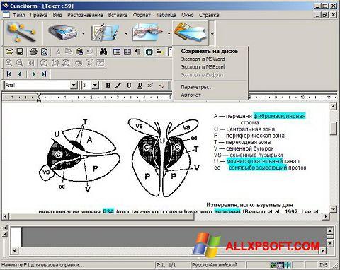 Capture d'écran CuneiForm pour Windows XP