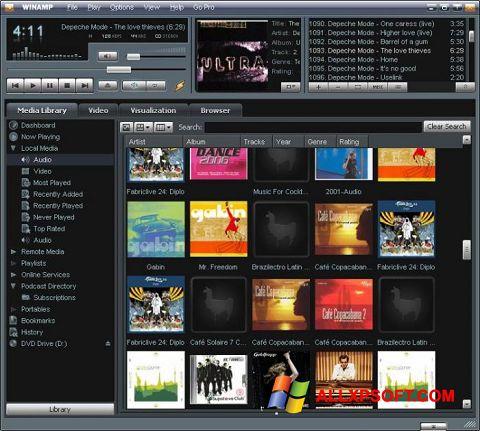 Capture d'écran Winamp pour Windows XP