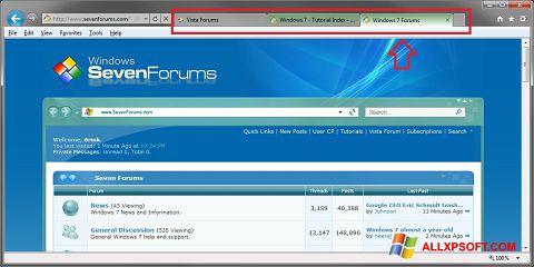 Capture d'écran Internet Explorer pour Windows XP