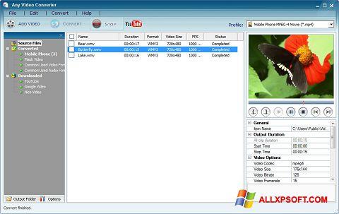 Capture d'écran Any Video Converter pour Windows XP