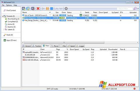 Capture d'écran BitTorrent pour Windows XP