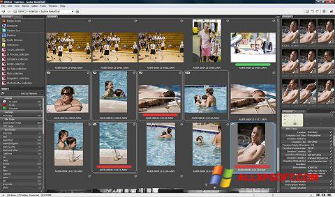 Capture d'écran Adobe Bridge pour Windows XP