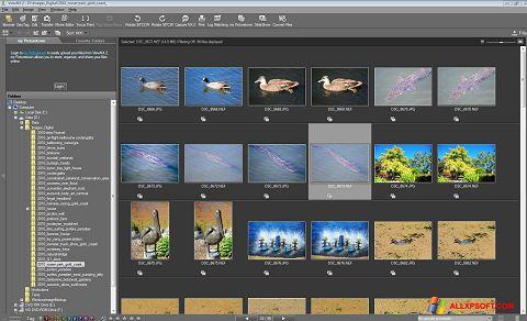 Capture d'écran ViewNX pour Windows XP