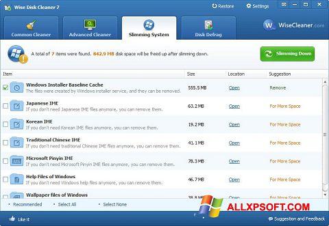 Capture d'écran Wise Disk Cleaner pour Windows XP