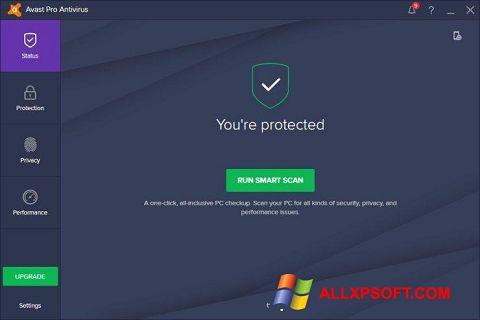 Capture d'écran Avast! Pro Antivirus pour Windows XP
