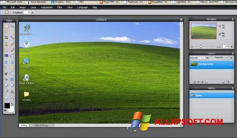 Capture d'écran LightShot pour Windows XP