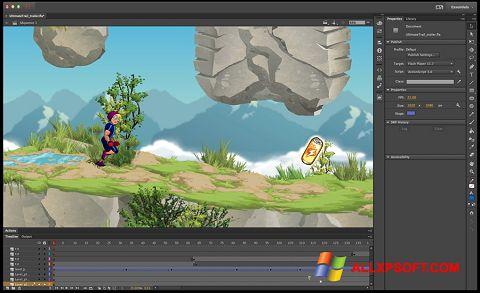 Capture d'écran Adobe Flash Professional pour Windows XP